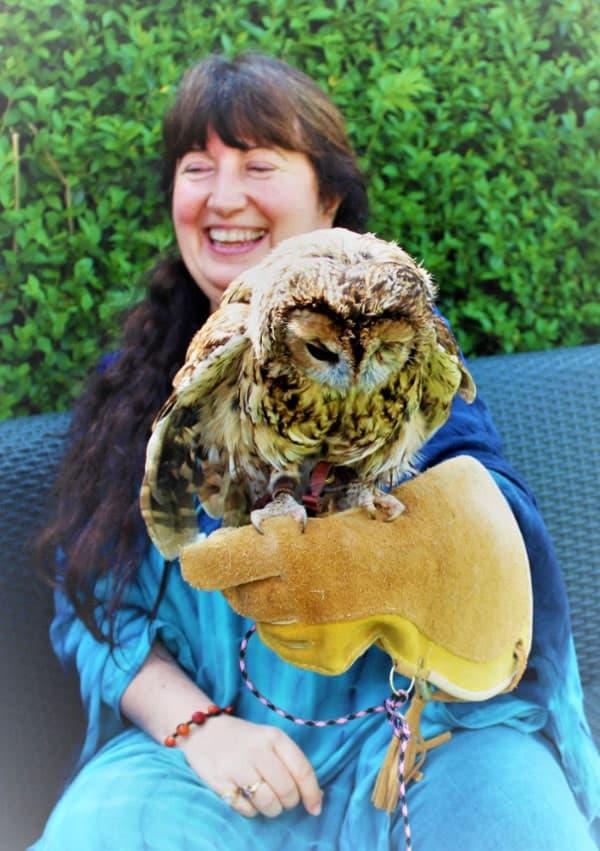 OwlMedicine Wisdom